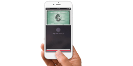 apple_pay_png_130x260
